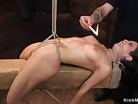 Darkhair gets nasty wax and snatch toyed