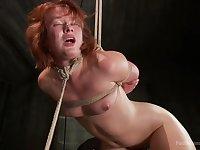 Titless redhead sluts Claire Robbins tries BDSM sex