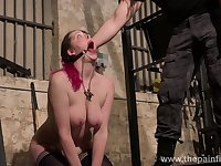 Submissive bosomy whore Alora Lux deserves bondage and some sport in hard mode