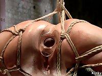 Hogtied slave assfucking toyed and nailed